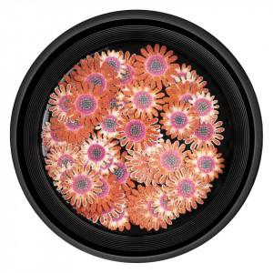 Decoratiuni Unghii Nail Art Blissful Flowers, LUXORISE