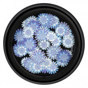 Decoratiuni Unghii Nail Art River Flowers, LUXORISE
