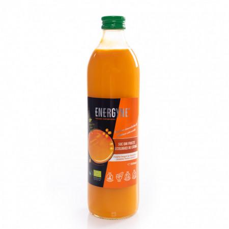 Suc de catina din fructe ecologice. Produs in Romania