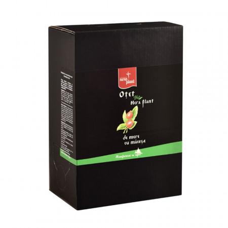 Otet de mere cu macese BIO Nera Plant, 3L