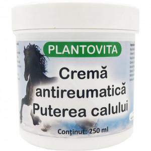 CREMA ANTIREUMATICA PUTEREA CALULUI - 250ML