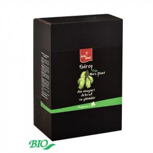 Sirop Nera Plant BIO din muguri de brad cu ghimbir, 3L