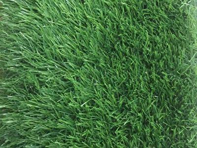 Veštačka trava N3SA1545