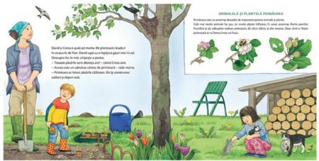 Chit-Chit citeste. ANotimpurile - carte ilustrata despre anotimpuri - interior