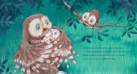 Iubire cat pentru doi - o poveste blanda pentru familiile care asteapta in bebelus, din care copiii invata ca iubirea nu se imparte, ci se inmulteste - detaliu 2