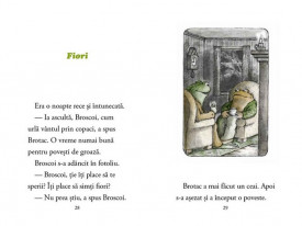 Zile cu Broscoi si Brotac - interior 2