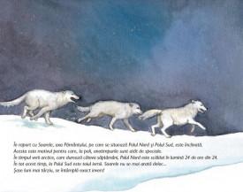 La Polul Nord sau la Polul Sud. Animalele frigului - interior 2
