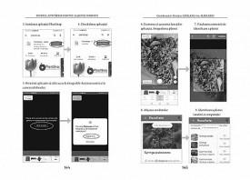 Specificul activitatilor didactice la grupele combinate: Ghid pentru cadrele didactice din invatamantul prescolar - interior 2