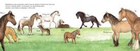 Caii. Uriasii domestici - interior 2