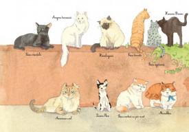Cainii si pisicile. Prietenii omului - interior 3