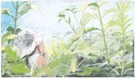 In iarba - o poveste despre curiozitatea copiilor mici - interior