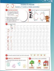 Elemente grafice. Caiet pentru clasa pregatitoare - interior 4
