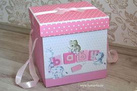 Cutie pentru trusou, Roz C1