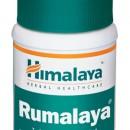 RUMALAYA FORTE tablete 60x