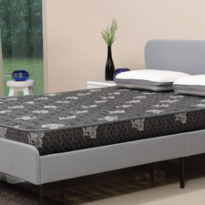 "Centuary Dr Sleep Mattress With Coir And Bonded Foam 5"" With 5 Years Warranty"
