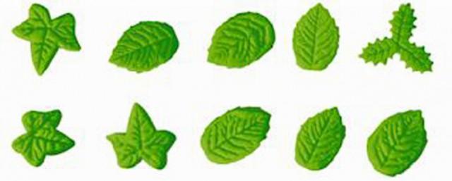 Stampo in silicone di 10 diversi tipi di foglie - Diversi tipi di erba ...