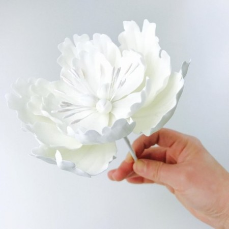 Gum Paste Bianca per Fiori Decorina Vip per modelling