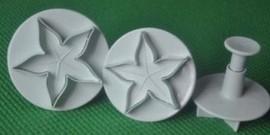 Grande Stella di Natale. 3 Stampi di varie dimensioni