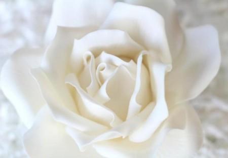 Gum Paste Bianca per Fiori. Decorina Vip per decorare le tue torte