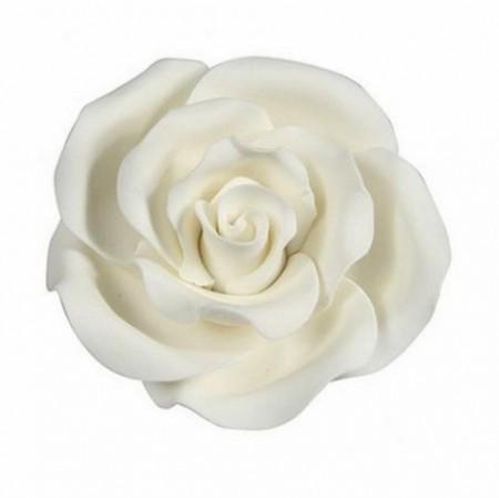 Rosa Bianca. Fantastica e realistica in zucchero. Modecor immagini