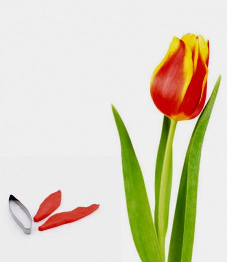 venatore silicone foglia Tulipano con cutter in metallo
