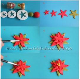 Stella di Natale.  Stampi in plastica per decorare dolci