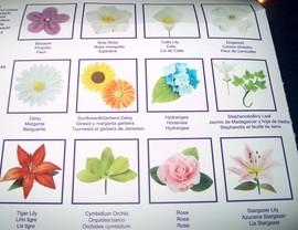 Confezione di 29 Stampi per realizzare splendidi fiori e petali.