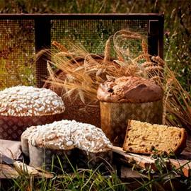 CEREAL'EAT. Per Panettone Colombe e Lievitati ai Cereali.
