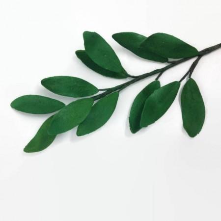 Gum Paste Verde per Fiori e foglie per il cake design