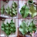 Gum Paste Verde per Fiori. per decorare