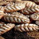 LE SPIGHE. 10 Kg. Per pane con farina di Cereali integrali. Irca