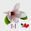 Petalo Magnolia. 2 Venatori + Cutter in metallo