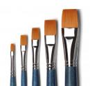 Set di 5 Pennelli per dipingere e decorare. Pennello in Setole Nylon