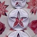 Stella di Natale. 3 Stampi in plastica per decorazioni con la pasta di zucchero