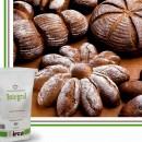 INTEGRAL Irca Mix per pane e focacce integrali di segale con germe di grano. 10 Kg.