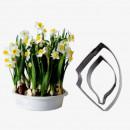 Narciso. 2 Cutter in metallo