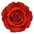 Fantastica Rosa Rossa in zucchero