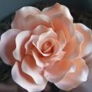 Gum Paste Rosa Tea per Fiori. Decorina per decorare