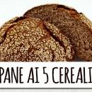 POKERPAN 10 Kg. Irca Mix di alta qualità per Pane ai 5 cereali. Frumento Integrale, Segale, Avena, Riso e Orzo.