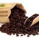 Caffè PERGAMINO SUL DE MINAS in grani o macinato (100 Gr)