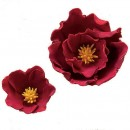 Gum Paste Rossa per Fiori. Decorina per modellare