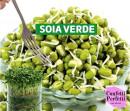 Semi di Soia Verde. 250 gr