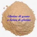Glutine di grano o farina di glutine.