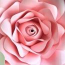 Gum Paste Rosa Tea per Fiori. Decorina ottima qualità