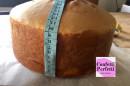 Pan di Spagna al Cioccolato da vero Chef ! GENOISE Irca. Miscela di altissima qualità
