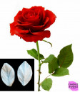 Grande Foglia Rosa di 10 cm. Doppio Stampo in silicone
