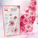 Crea Rose Bellissima e facilmente con lo stampo FMM Cutter The Easiest Rose Ever
