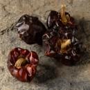 Peperoncino Niora dolce profumato e gustoso Spagna.