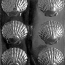 Grandi Conchiglie. Stampo in policarbonato
