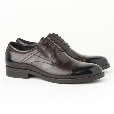 Kožne muške cipele HL-307D-7C braon